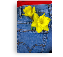 Daffys In Denim Canvas Print