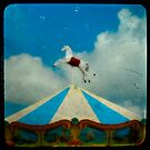 carousel day by gothicolors