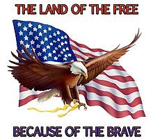THE LAND OF THE FREE BECAUSE OF THE BRAVE Photographic Print