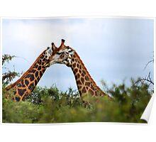 HUGS - THE GIRAFFE - kameelperd Poster