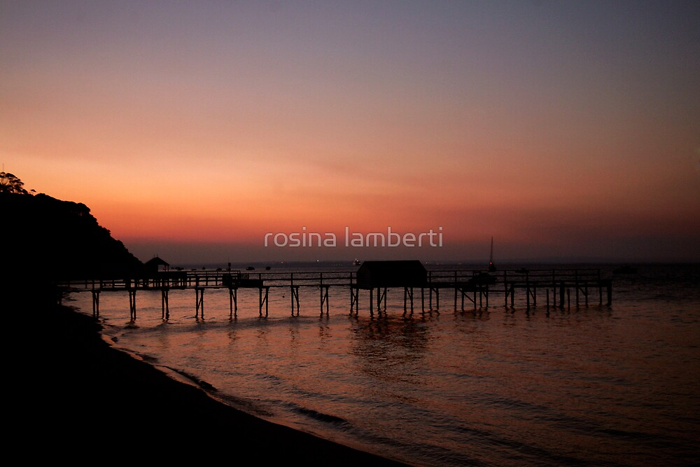 Shelly beach,Mornington Pennisula by Rosina  Lamberti