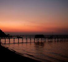 Shelly beach,Mornington Pennisula by Rosina  Lamberti