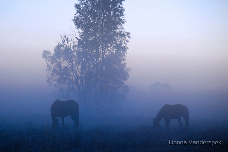 Broodmares, Blue mist by Donna Vanderspek