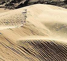 wind shaped Desert sand dune by PhotoStock-Isra