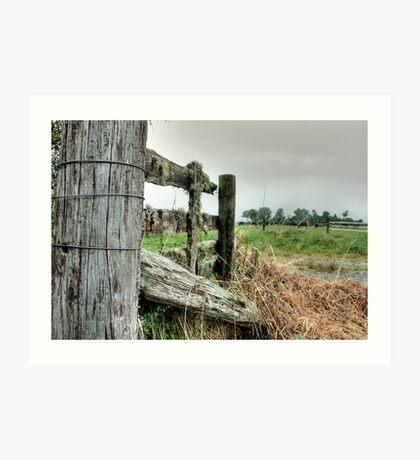 Rustic Fence Art Print