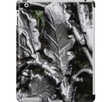 Blarney Castle Wrought Iron iPad Case/Skin