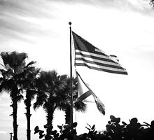 Home of the free by Matie