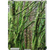 Green Trees at Kilarney National Park, Ireland iPad Case/Skin