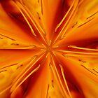 Orange Marmalade by David Dunham
