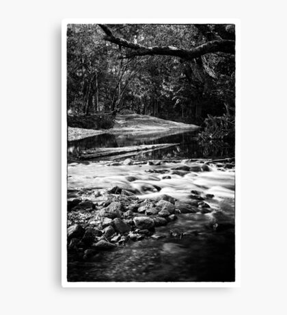 art noir #1 Canvas Print