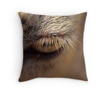 Eyelash Throw Pillow