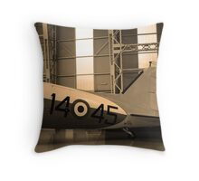 Ancient wings -4- Throw Pillow