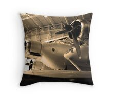Ancient wings -5- Throw Pillow