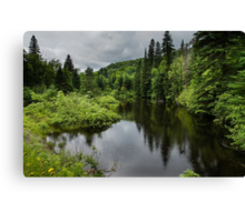 Forest Lake - Charlevoix, Quebec, Canada Canvas Print