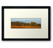 Autumn in Provence vineyard Framed Print