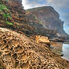 Weathered Rock at Gowrie Beach by Michael Matthews