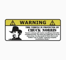WARNING! This vehicle is protected by Chuck Norris by Lezardesifs