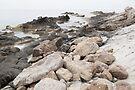 Some rocks on the beach by Patrick Morand