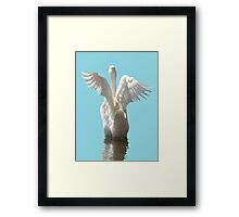 White Duck Flapping Wings on Water Vector Framed Print