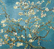 Van Gogh - Branches with Almond Blossom by chazhaz13