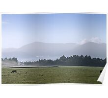 Cold Yarra Valley Morning Poster