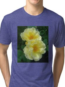 Two Yellow Roses Tri-blend T-Shirt