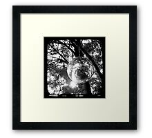 Orbit Framed Print