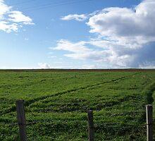 Field by 4u64ica