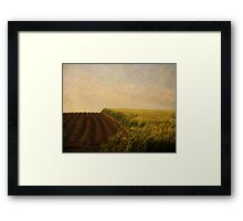 Green Grass. Framed Print