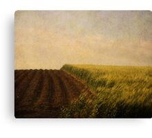 Green Grass. Canvas Print