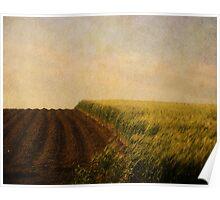 Green Grass. Poster