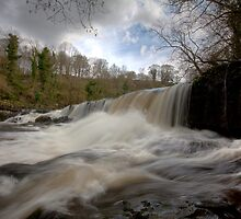 Aysgarth Falls by Paul Thompson Photography