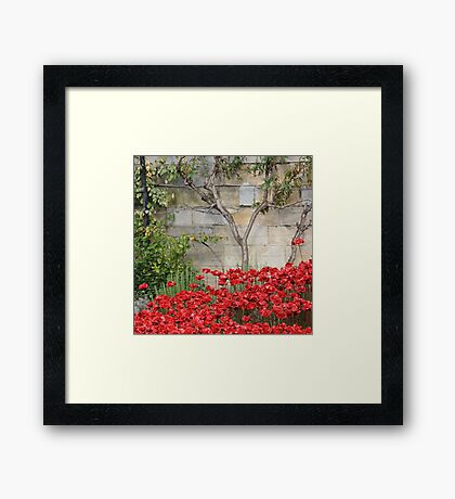 Blood swept Lands and Seas of red #3 Framed Print