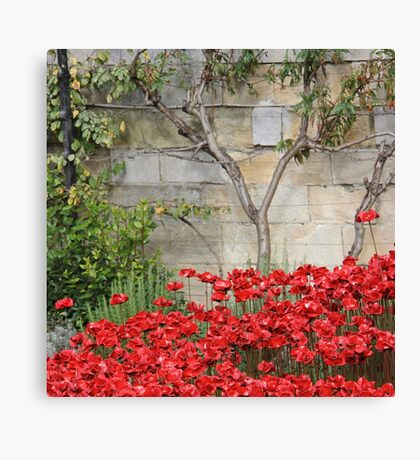 Blood swept Lands and Seas of red #3 Canvas Print