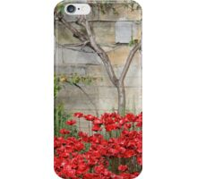 Blood swept Lands and Seas of red #3 iPhone Case/Skin