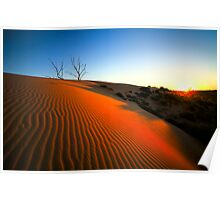 Red Dunes of the Cooper Basin Poster