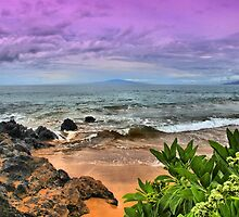 A View from Maluaka Beach by DJ Florek