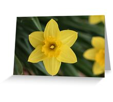 I love spring Greeting Card