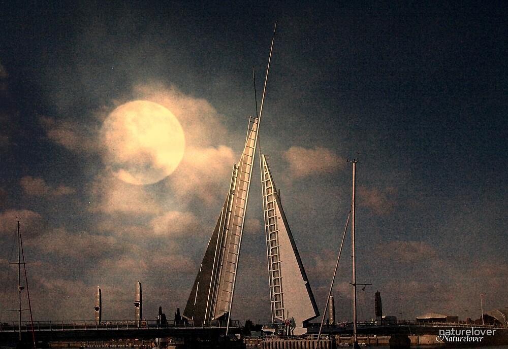 Moonlit Sails by naturelover