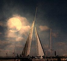 Moonlit Sails by naturelover
