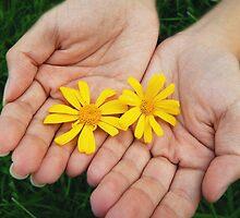 Yellow Flower by Jamie Nghiem