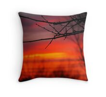 Take a Stand Back  Throw Pillow