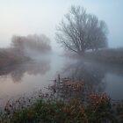 Misty River Nene by Nick Atkin