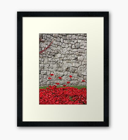 Blood swept Lands and Seas of red #5 Framed Print