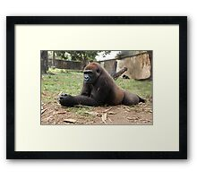 Power At Rest Framed Print