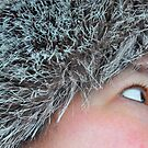 Just A Peek by Jarede Schmetterer