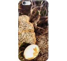 Indian Paintbrush Hawk egg iPhone Case/Skin