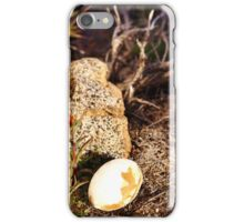 Indian Paintbrush Hawk egg iPhone Case/Skin