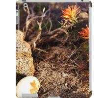 Indian Paintbrush Hawk egg iPad Case/Skin