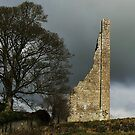 ruin's at trim. No 2. by Finbarr Reilly